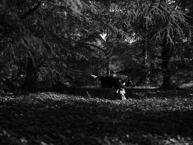 Sabre dans la forêt - Une photo de Satoshi Saikus